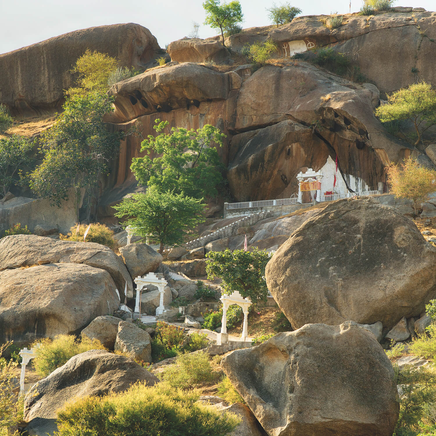 SUJÁN JAWAI - Temple Trail