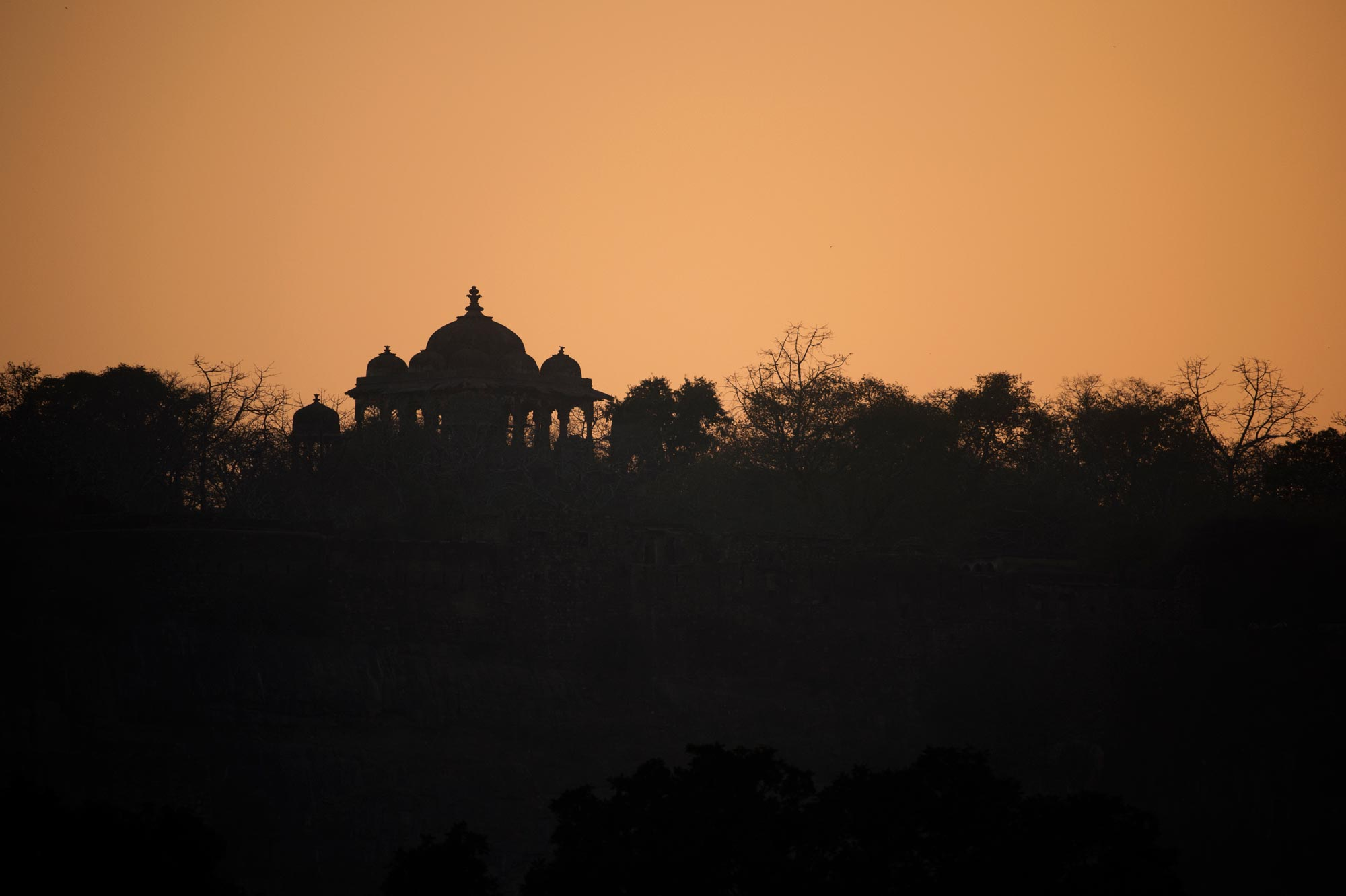 The Ranthambhore Fort